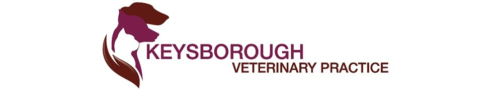 Keysborough Vets